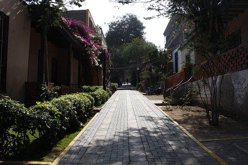 City Of Lima, Peru, Lime, Nature, Path, Avenue, Trees