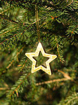 Star, Deco, Fir Tree, Christmas, Symbol, Advent, Golden