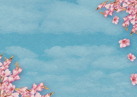 Flowers, Clouds, Sky, Background Image, Spring