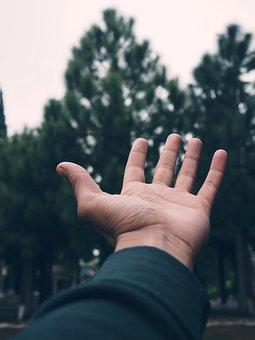 Bokeh, Hand, Earth, Keep, Present, Hope, Leaf, Healing