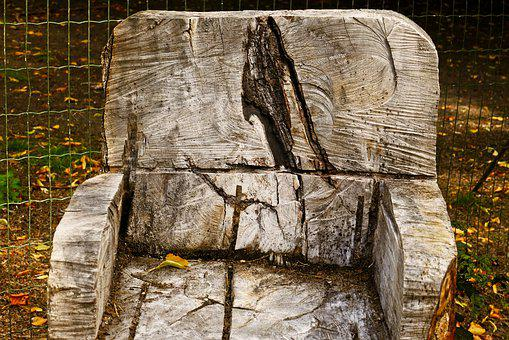 Tree Trunk, Chair, Wood, Nature, Art, Autumn