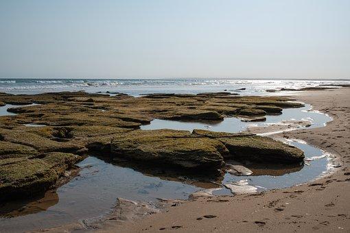 Beach, Ocean, Sea, Water, Summer, Sand, Coast, Holidays