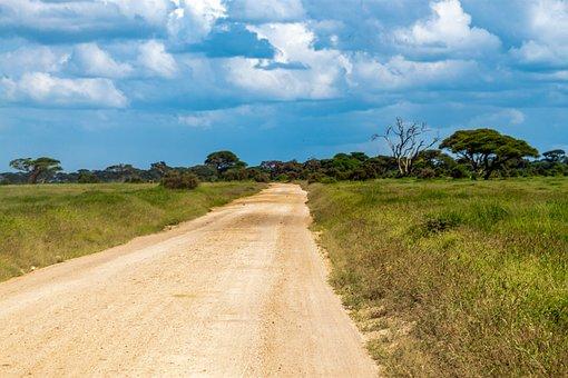 Amboseli National Park, Landscape, Safari, Wilderness