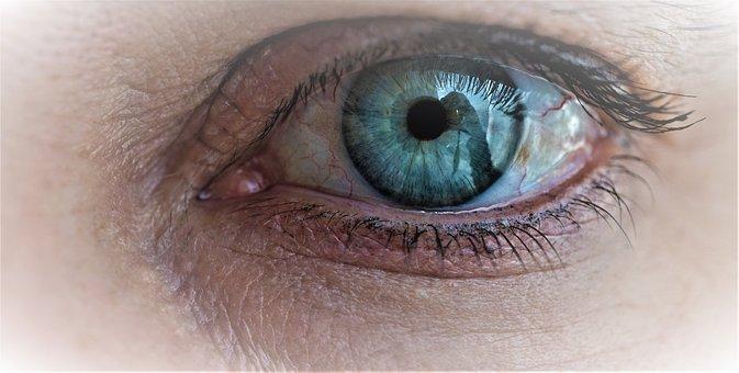 Eye, Green, Woman, Human, Female, Best Ager, Fold