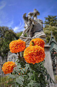 Graveyard, Day, Tombstone, Funeral, Flowers, Cemetery
