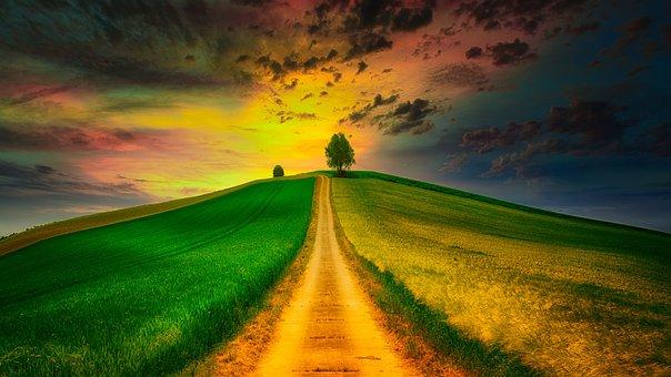 Hill, Fields, Meadow, Entfernd, Tree, Lane, Lonely, Sky