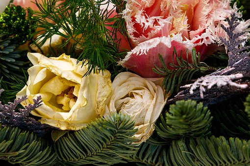 Christmas Decor, Flowers, Fir-tree Branches