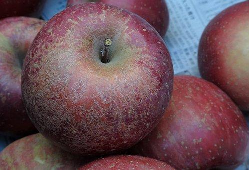 Apple, Red, Fresh, Natural, Winter, Fruit