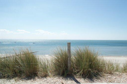 Sea, Dunes, Zealand, Netherlands, North Sea, Grass