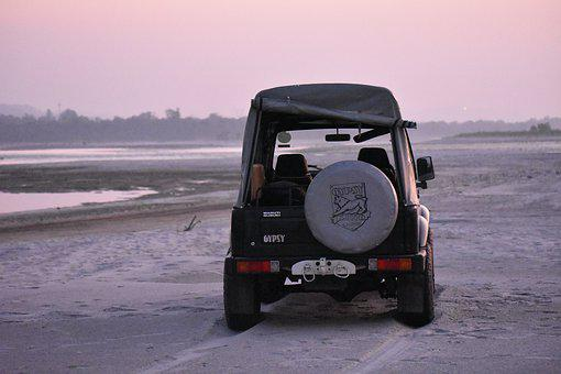 Off Road, India, Jeep, Vehicles, Travel, Jungle