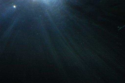 Underwater, Water, Diving, Ocean, Underwater World