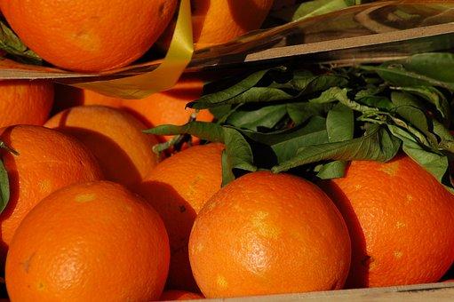 Oranges, Citrus Fruits, Fruit, Sano, Vitamins, Orange