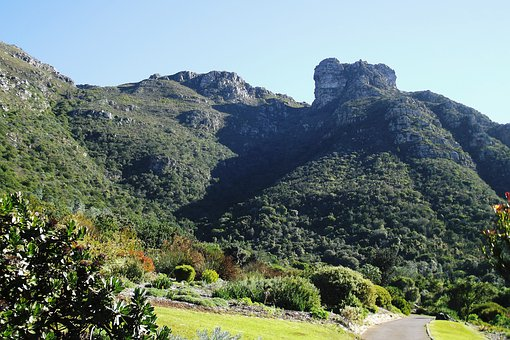 Kirstenbosch National, Botanical Garden, Cape Town