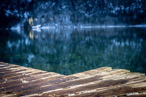 Tree, Forest, Landscape, Snow, Lake, Salzkammergut