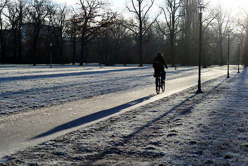 Winter, Park, Cyclists, Movement, Frost, Shadow, Sun