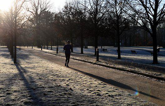Winter, Jogging, Park, Frost, Run, Sun, Shadow, Light