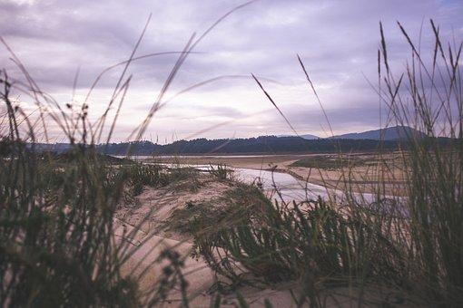 Beach, Sand, Nature, Travel, Sea, Ocean, Wind, Marsh