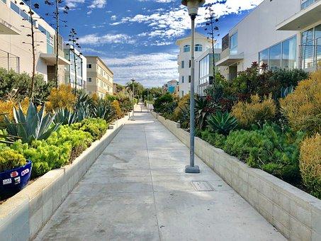 Venice Beach, Los Angeles, Usa, California, Vacations