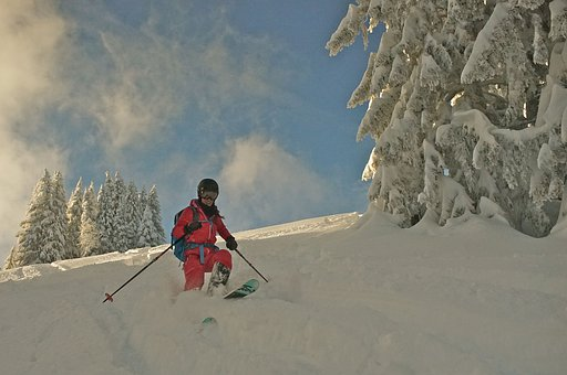 Skiing, Winter, Sport, Snow, Winter Sports, Wintry