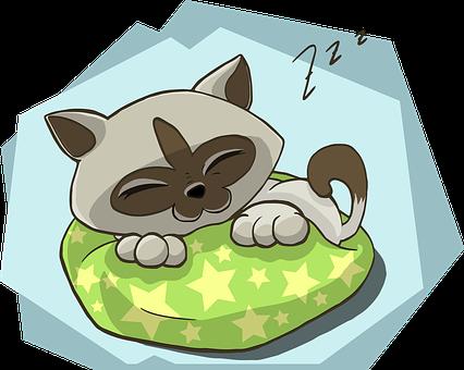 Kitten, Kitty, Cat, Sleeping, Sleep, Zzz, Animal, Fur