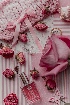 Rose, Pink, Gift, Flowers, Summer, Spring, 14 February