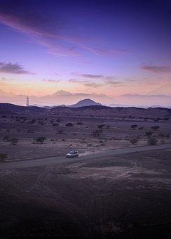 Deert, Sunset, Drive, Evening, Driving, Car, Landscape