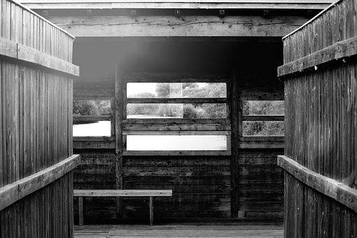 Hut, View, Overview, Window, Wood, Wall, Wooden Wall