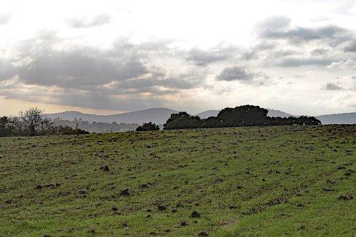 Malvern Hills, Landscape, Malvern, Hill, England, Uk