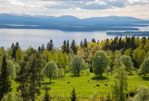 Landscapes, Mountain, Sweden, View, Nature, Water