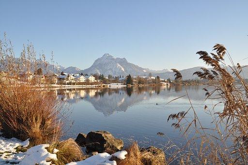 Lake, Winter, Säuling, Allgäu, Germany, Bank