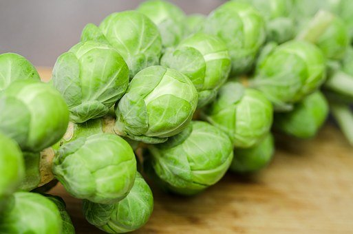 Sprouts, Vegetables, Diner, Green, Food, Organic, Fresh