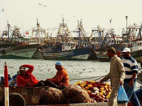 Morocco, Ship, Dreamy, Colorful, Gulls, Travel