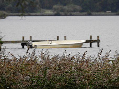 Lake, Water, Boot, Powerboat, Sea Grass, Grass, Reed