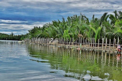 Lake, Pond, Boat, Sky, Vietnam, Tree, Trees, Forest