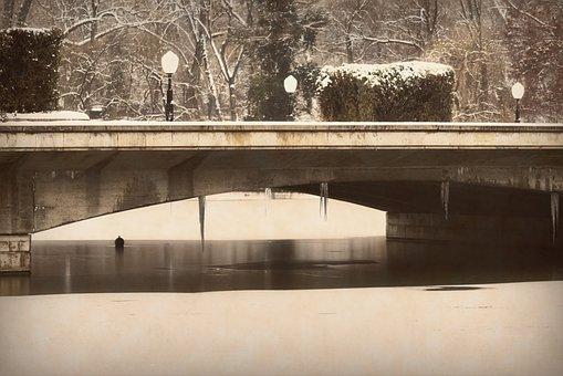 Landscape, Winter, Park, Lake, Water, Bridge, Icicles