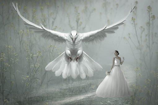 Fantasy, Bird, Dove, White, Woman, Nature, Fairy Tales