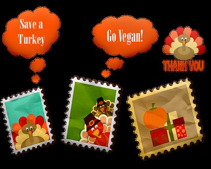 Funny Turkey Pictures, Save A Turkey, Go Vegan