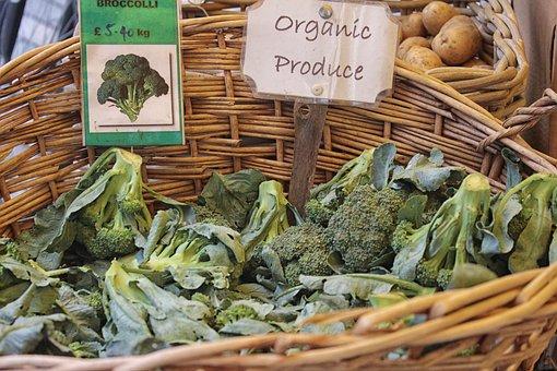 Broccoli, Vegetables, Green, Vegan, Healthy, Vegetable