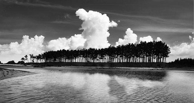 Pine, Cloud, Island, Sea, Sky, Huangji, Story, Dream