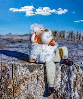 Schäfchen, Sheep, Lamb, Sun, Winter, Sky, Blue, Clouds