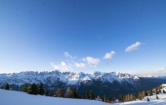 Mountains, Birds, Winter, Bird, Sky, Landscape