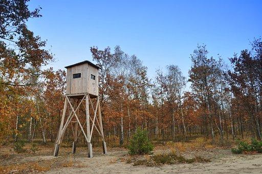 Traverse, Tower, Watchtower, Forest