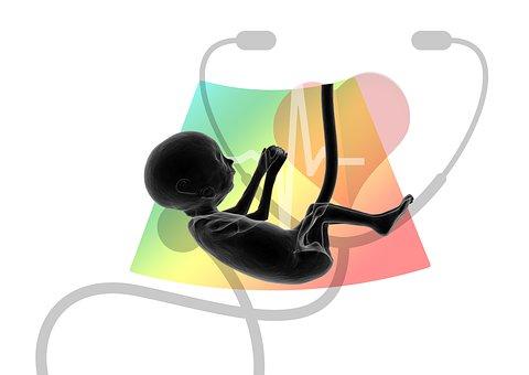 Ultrasound, Fetus, Embryo, Placenta