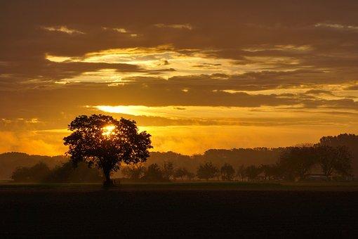Sunrise, Sun, Sky, Clouds, Trees, Mood, Sunlight