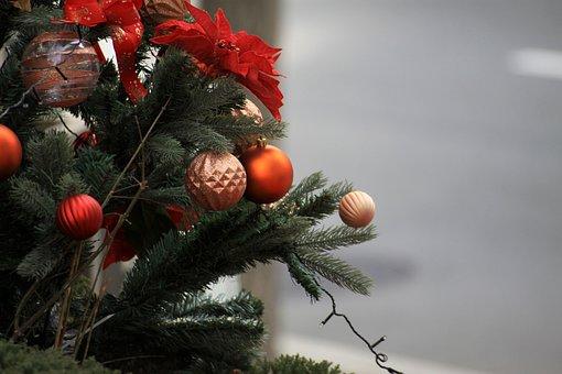 Christmas, Tree, Ornament, Winter, Holiday