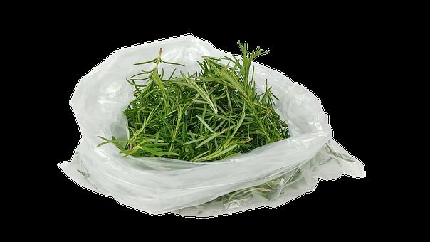 Rosemary, Hub, Honey, Spice, Food, Fresh, Green