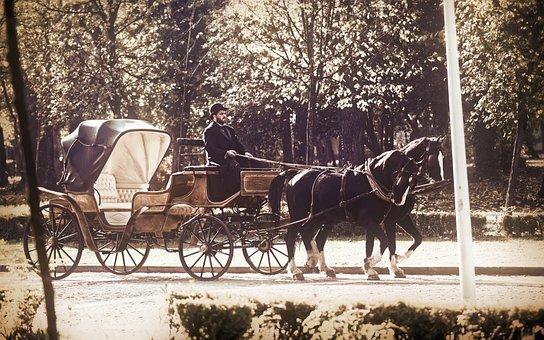 Coach, Horses, Epoch, Driver, Suit, Black, Going