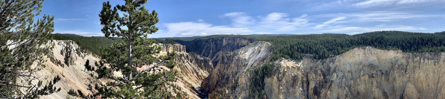 Yellowstone, Wyoming, Wilderness, Nature, Landscape