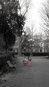 Park, Velo, Wheel, Turned Off, Old