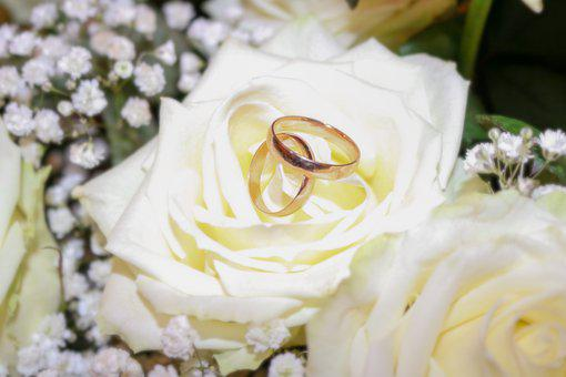 Wedding, Rings, Jewellery, Love, Pair, Commitment, Gold